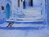 chefchaouen-morocco-24