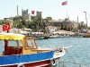 turkey-on-urbanpeek-40