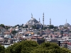 turkey-on-urbanpeek-41