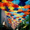 Vivid Umbrellas Installation in Agueda, Portugal